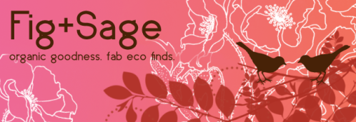 UPDATED PNG Fig and Sage Banner 1-9-09